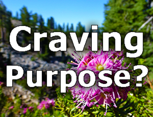 Craving Purpose?